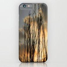 Last Light iPhone 6s Slim Case