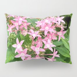 Pink Flowers 001 Pillow Sham