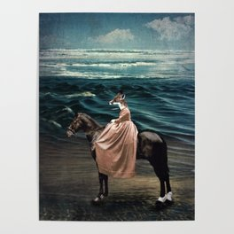 The Fox and the Sea Poster
