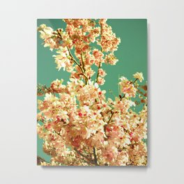 Concentrated color flower Metal Print