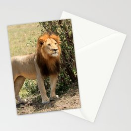 King Of The Savannah Stationery Cards