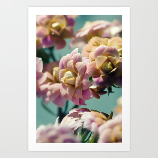 FLOWERS MACRO NATURE Art Print