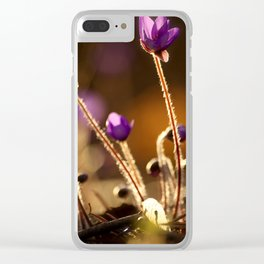 Hepaticas in The Glare Of The Sun #decor #society6 Clear iPhone Case
