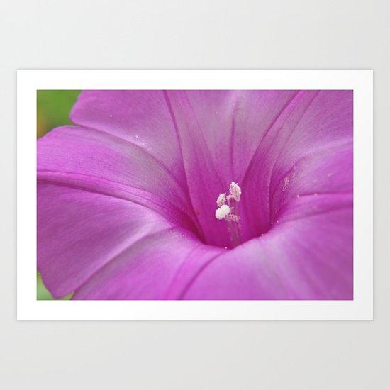 the heart of a flower Art Print