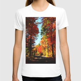Fall Forest Road T-shirt