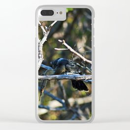 Anhinga on a Branch Clear iPhone Case