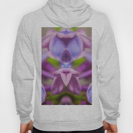 Nature Offering Hoody