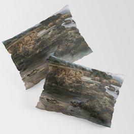 Sea Ranch Beach Seals Printable Wall Art | California Nature Ocean Coastal Travel Wildlife Photography Print Pillow Sham