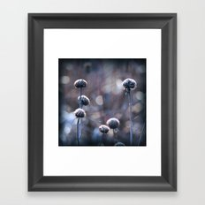 Copper Field Evening Frost Framed Art Print