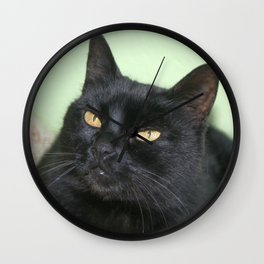 Relaxed Black Cat Portrait  Wall Clock