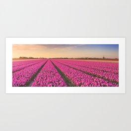 Tulip fields at sunrise Art Print