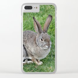 Cottontail Rabbit Clear iPhone Case
