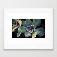 succulent Framed Art Prints featuring Succulent by KunstFabrik_StaticMovement Manu Jobst