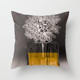 IL NOBLE Throw Pillow