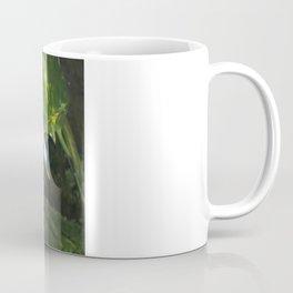 Bali Myna Coffee Mug