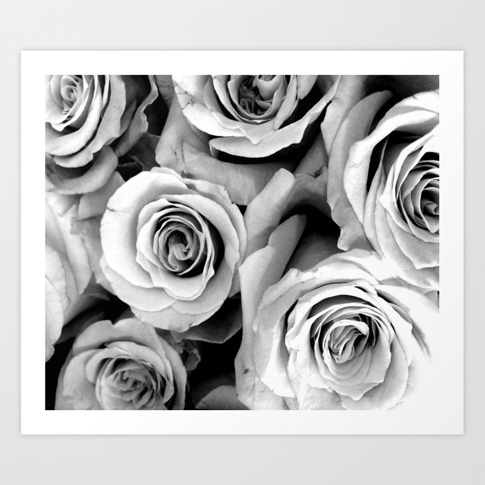 Black and White Roses Kunstdrucke