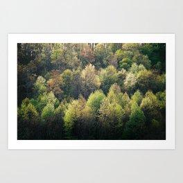 Spring Greens Art Print