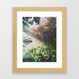 Botanical tropical Framed Art Print