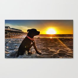 Pacific Beach Sunset with Porcha Canvas Print