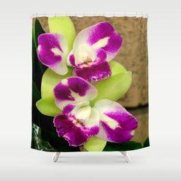 Proudly Peloric Purple... Shower Curtain