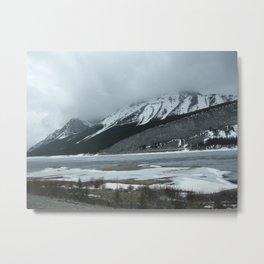 Cold Beauty 5 Metal Print
