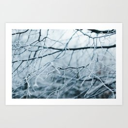 Snowy Winter Trees Art Print
