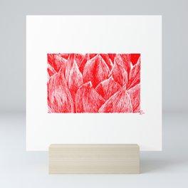 echeveria-17 Mini Art Print