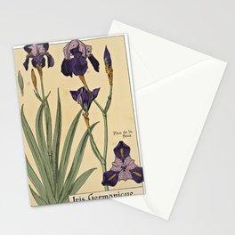 Maurice Pillard Verneuil - Étude de la plante (1903): Bearded Iris Stationery Cards