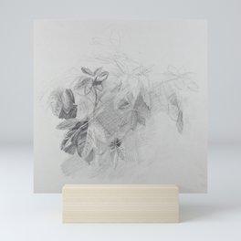 Plant Study Mini Art Print