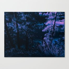 the rave on witch mountain Canvas Print