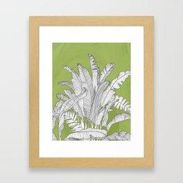 Banana Leaves Illustration - Green Framed Art Print