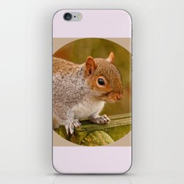 Woodland-Photos  Logo iPhone Skin