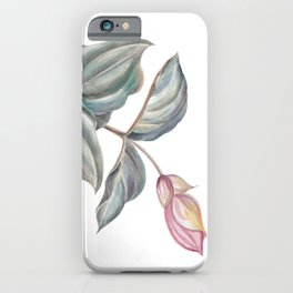 branch of pink Medinilla Magnifica iPhone Case