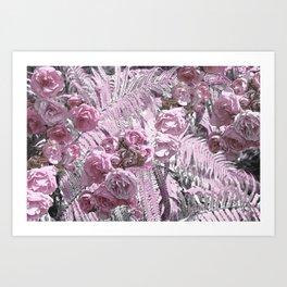 Lily rose Art Print