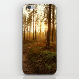 The Warmest Morning iPhone Skin
