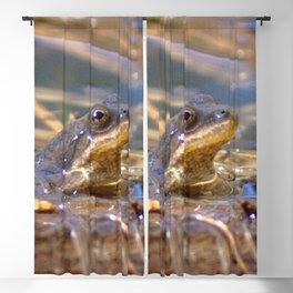 Watercolor Amphibian Western Chorus Frog 05, Summer Day Blackout Curtain