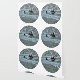 Sea Otter Fellow Wallpaper