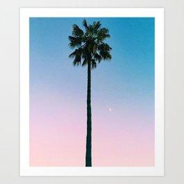 From Dusk til Palm Art Print