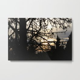 Autumn Light in Vancouver Metal Print
