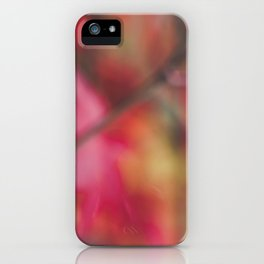 Autumn, The Red Leaf. iPhone Case