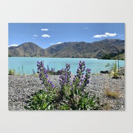 Close to nature Canvas Print
