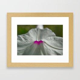 White Flower Macro Framed Art Print