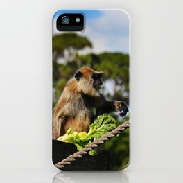 Mysterious Lady I iPhone Case