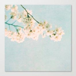 summer look Canvas Print