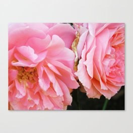 Two is better than one Canvas Print