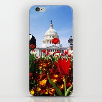 patriotic iPhone & iPod Skins featuring Patriotic Tulips by Madison Webb