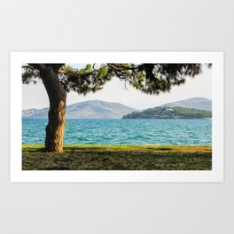 Tree By the Bay Art Print