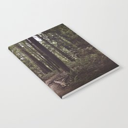 Redwood Forest Notebook