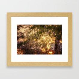 Dance of the Setting Sun Framed Art Print