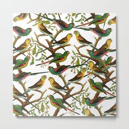 Colorful red green tropical birds parakeets pattern Metal Print